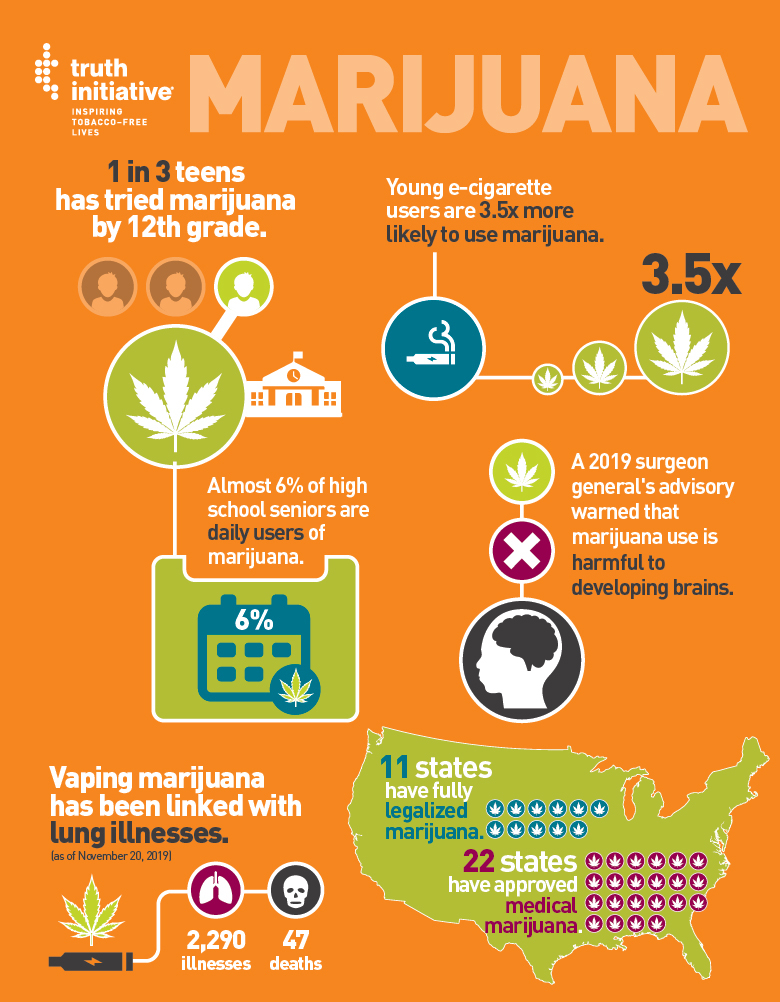 Marijuana Fact Sheet Infographic