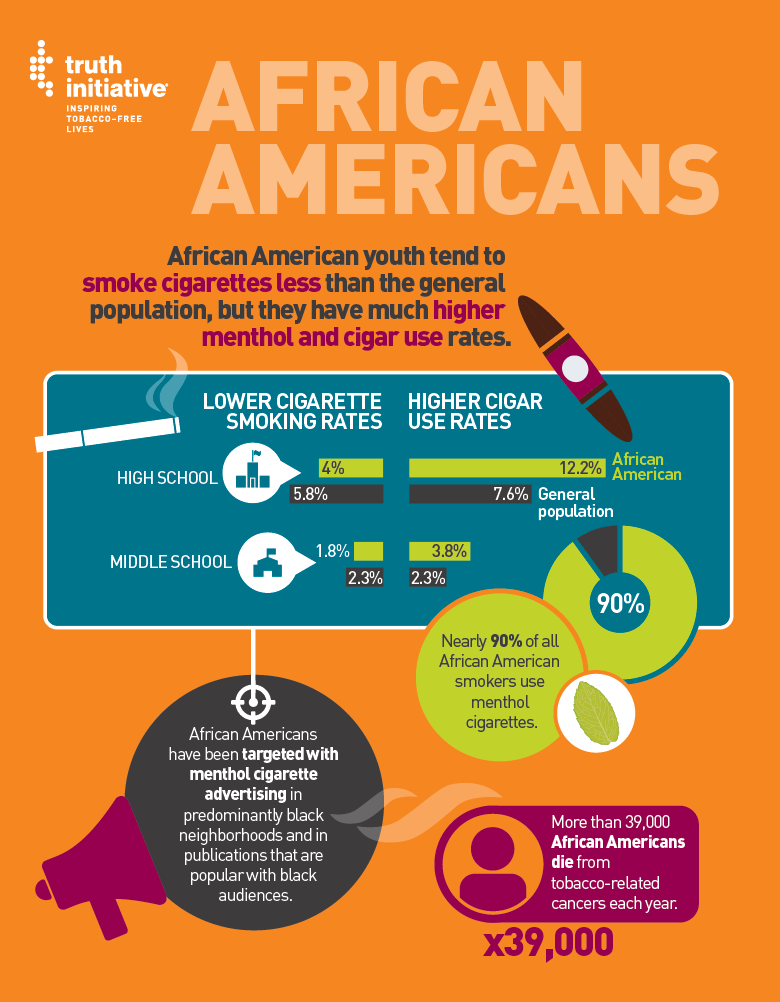 African American Fact Sheet Infographic