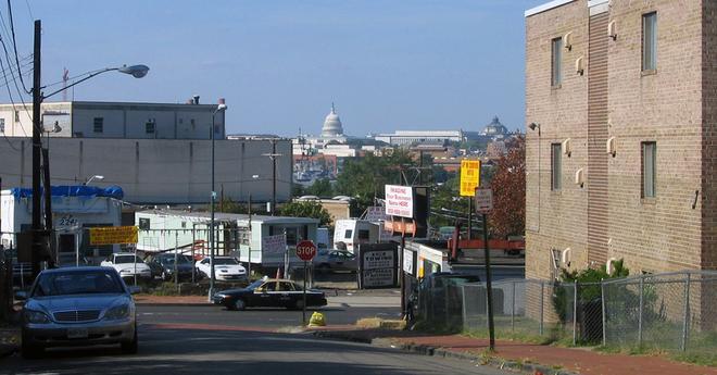 Maple view Washington DC