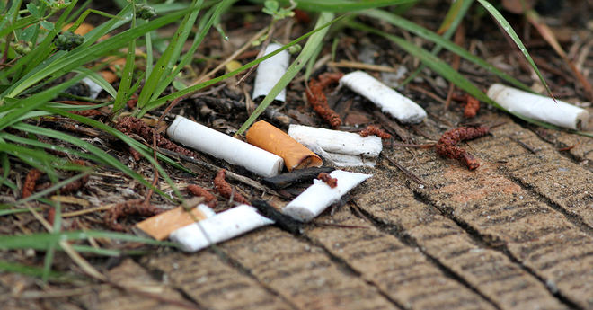 cigarette butts earth
