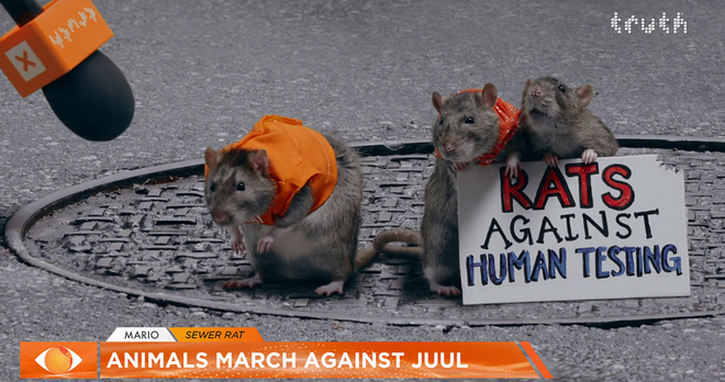 Screen shot of rats from the tested on humans ad