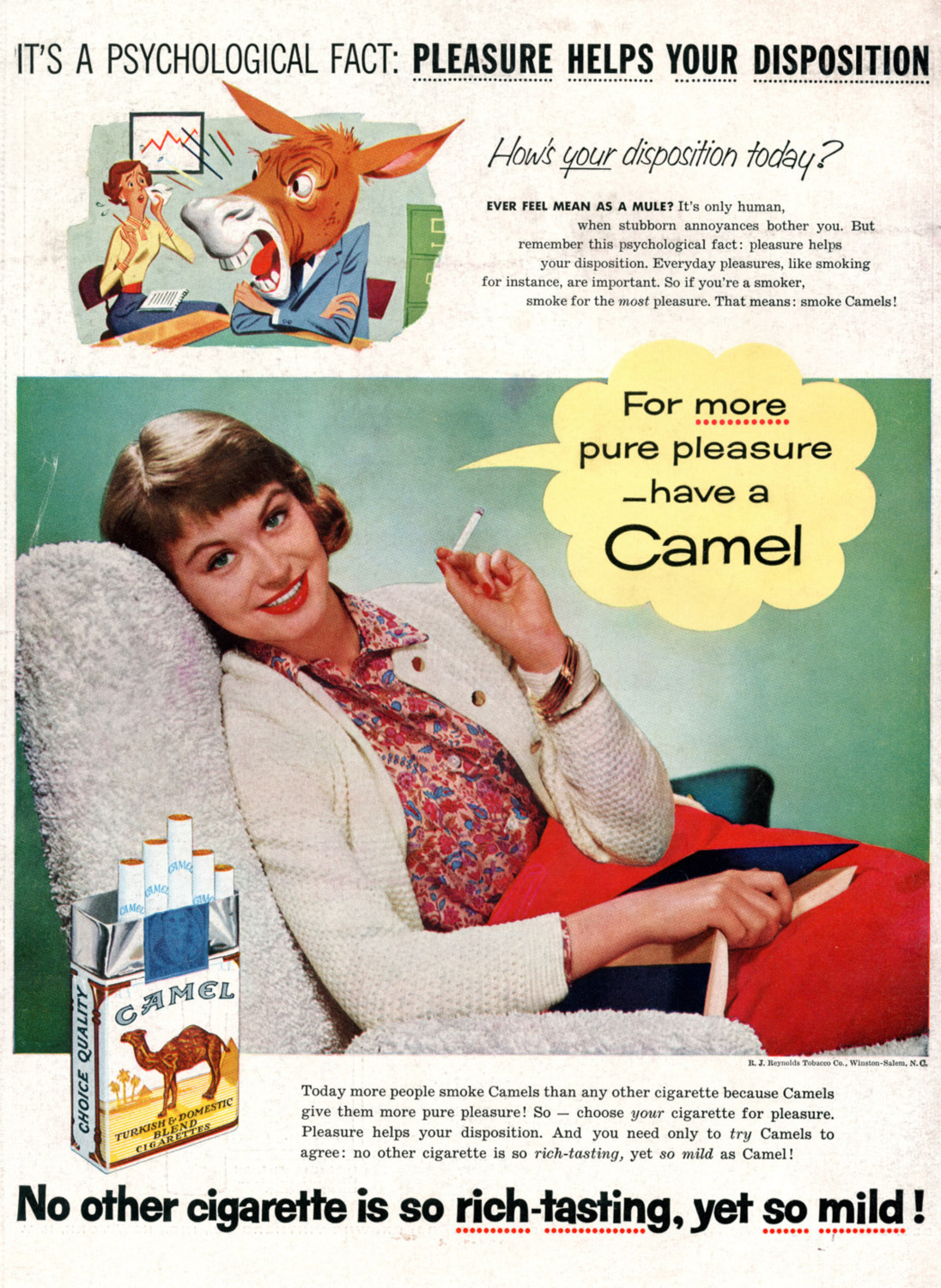 Camel pleasure helps your disposition ad